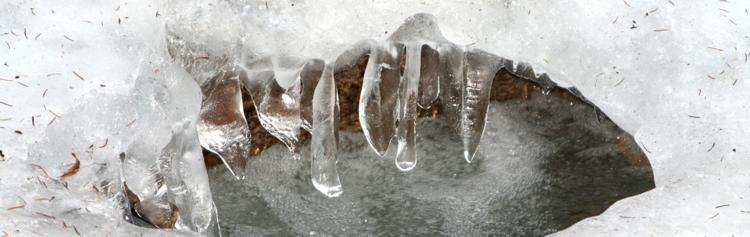 Schmelzende Eiszapfen