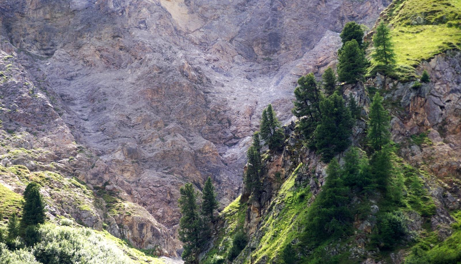 Berge Sertig