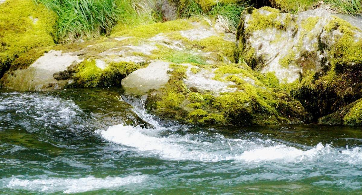 Fluss Schamanenreise