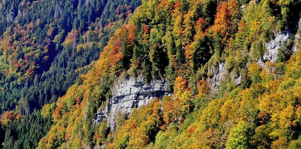 Schweizer Herbst See