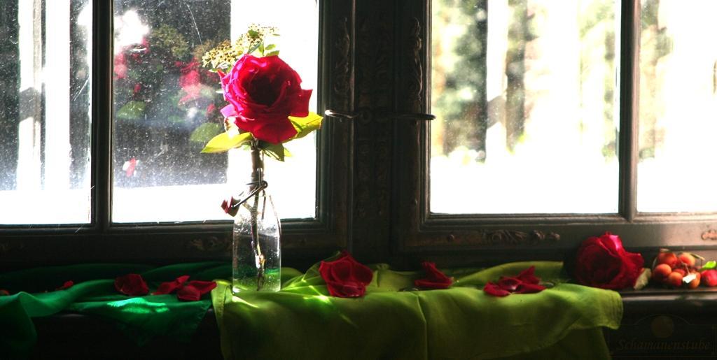 Rosen Fenster Seelengeburt