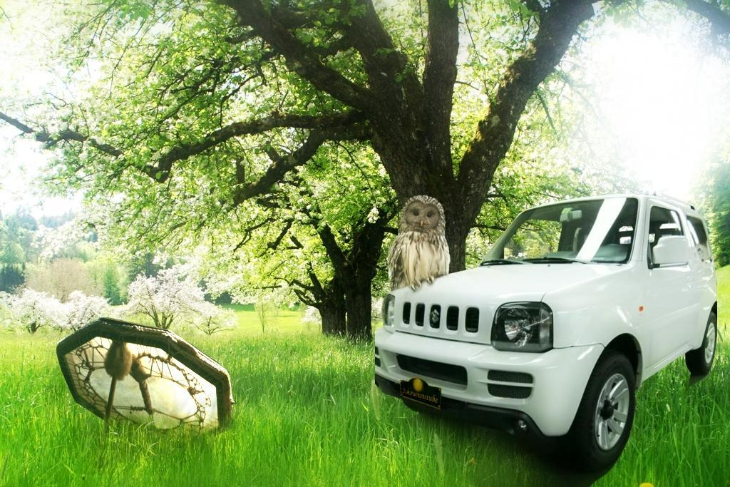 Schamanen Auto - Suzuki Jimny