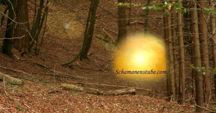 Schamanismus Ausbildung im Wald