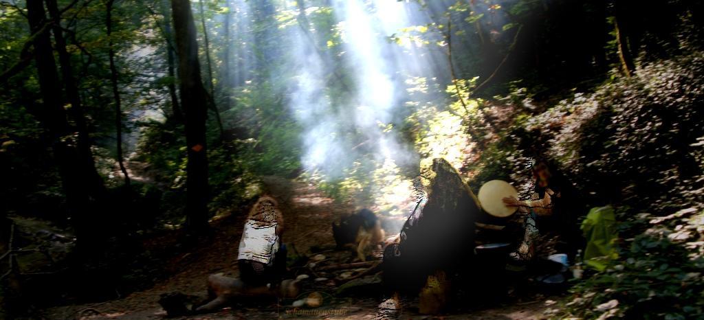 Schamanismus im Wald