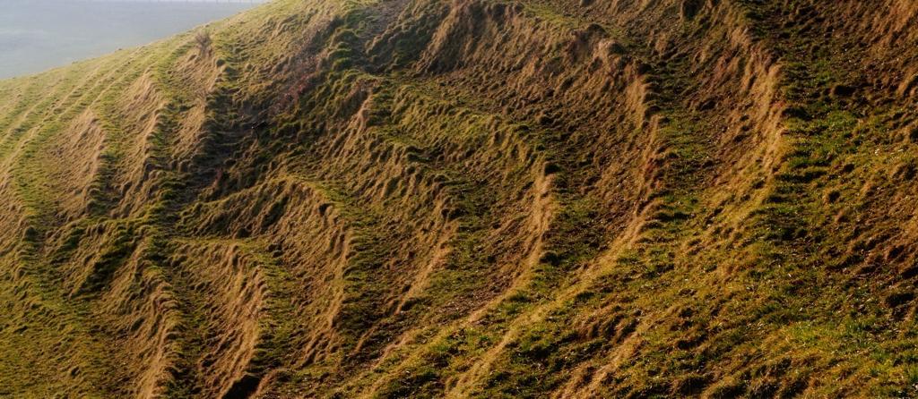 Hügelwege